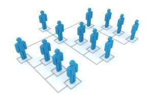 Line sales organization