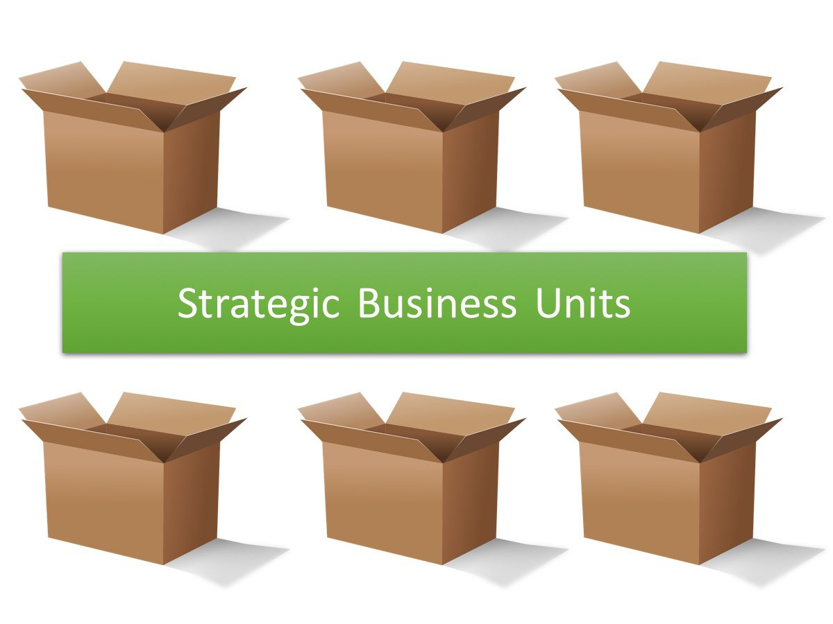 Strategic Business Units - 1
