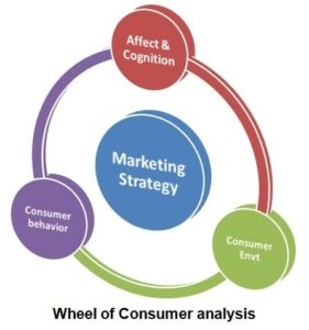Wheel of consumer analysis