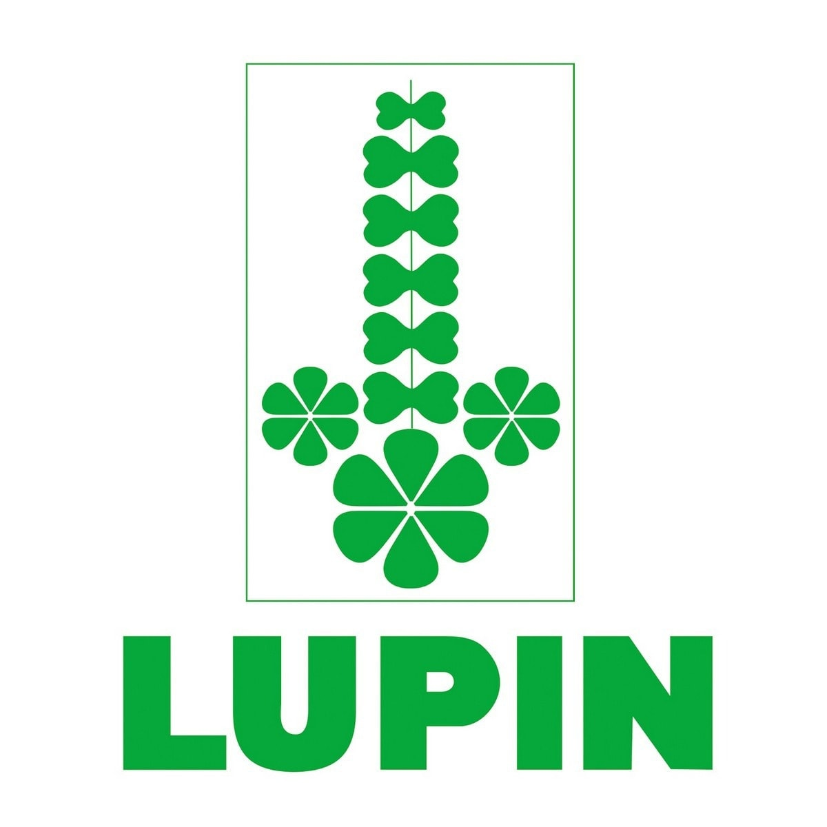 Marketing Mix Of Lupin – Lupin Marketing Mix