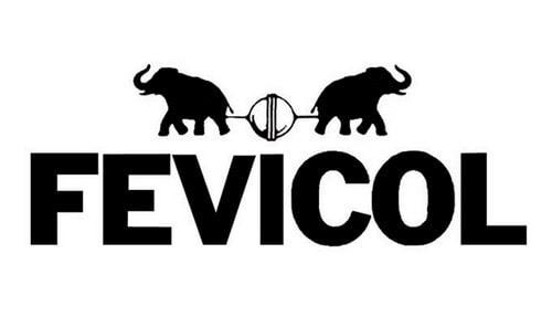 Marketing Mix Of Fevicol