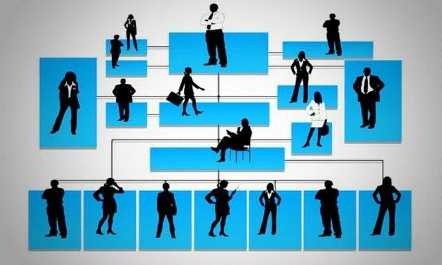 Organization Structure 2