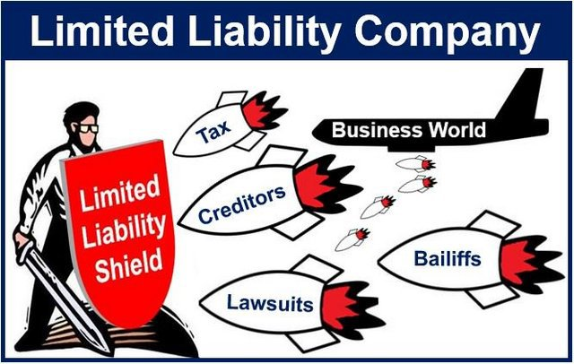 limited liability company advantages and disadvantages pdf