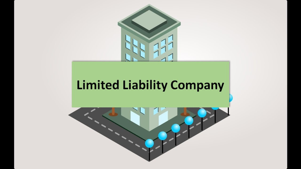 What is a Limited Liability Company? Advantages and Disadvantages of Limited Liability