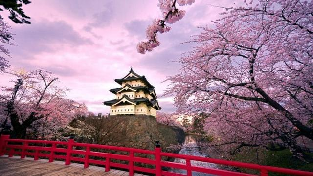 SWOT analysis of Japan 2