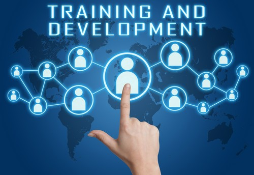 Employee training and development - 2