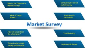 How to conduct a Market Survey?