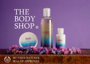 Marketing mix of the Body Shop