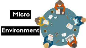 What is Micro Environment in Business?