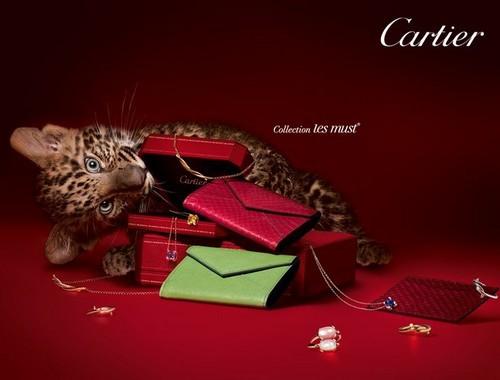 SWOT analysis of Cartier - 2