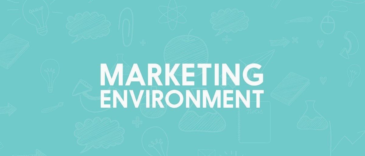 Importance of Marketing Environment - 3