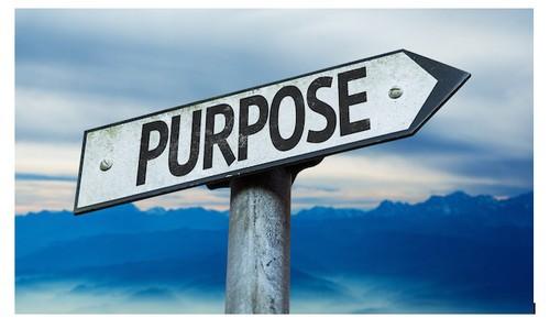 purpose of a website - 2