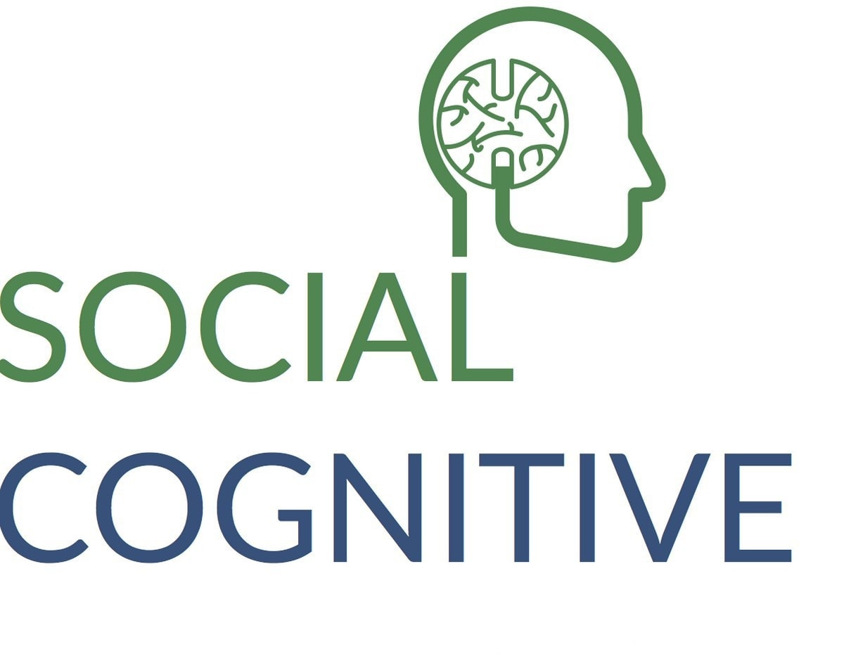 SOCIAL COGNITIVE THEORY - 3
