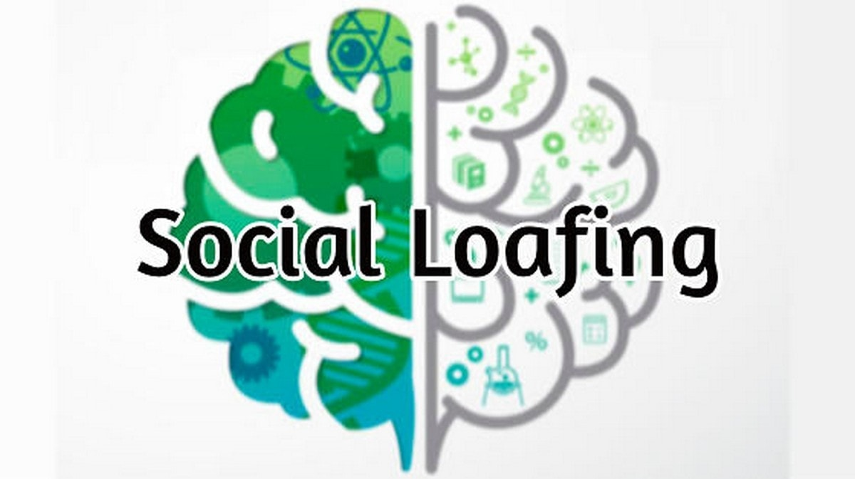 What is Social Loafing?