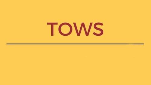 TOWS Matrix - 2