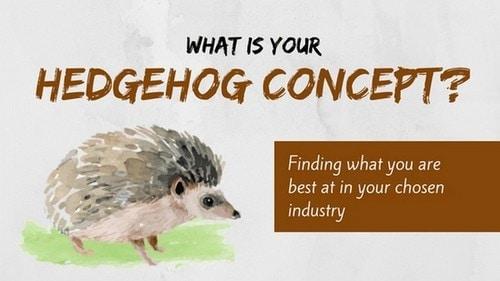 The Hedgehog Concept - 1