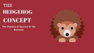 What is the Hedgehog Concept?