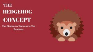 The Hedgehog Concept - 3