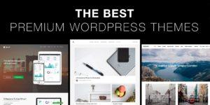 WordPress Theme - 5