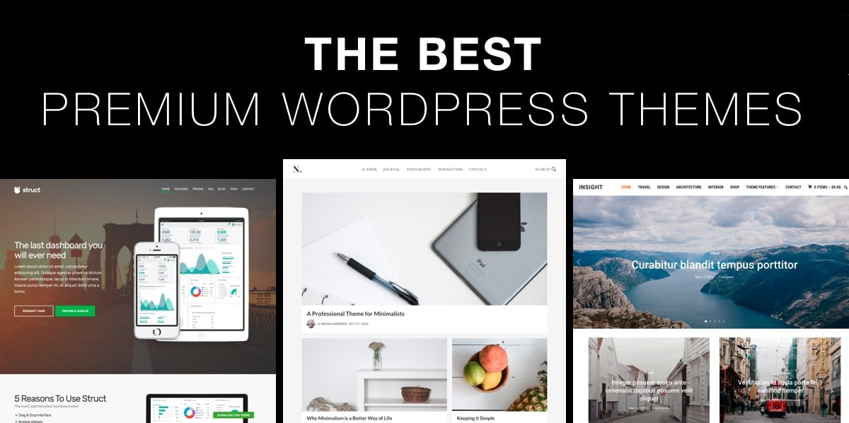 WordPress Theme - 5
