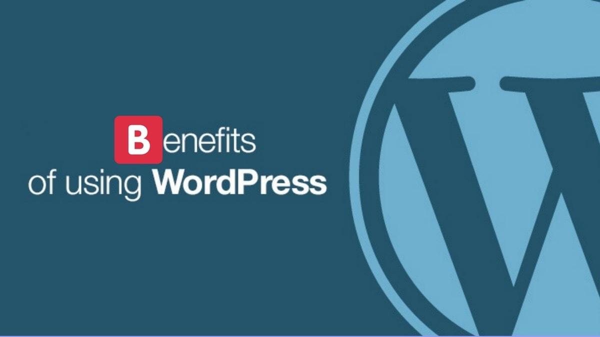 Advantages of WordPress - 5