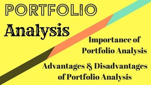 Portfolio Analyze - 1