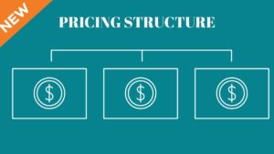 Pricing Structure - 3