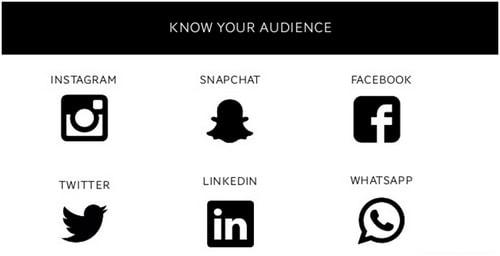 Social media audience - 1