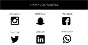 Social media audience - 2