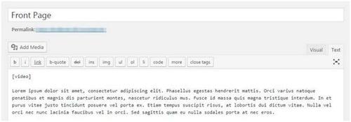 WordPress Homepage - 4