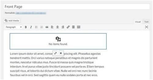 WordPress Homepage - 5