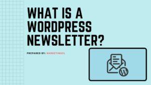 WordPress Newsletter - 2