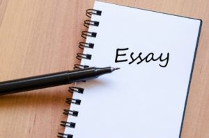 Types of essay - 6
