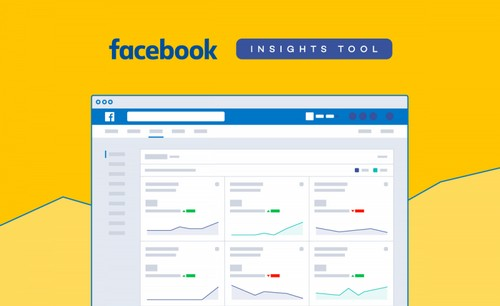 Facebook Insights - 2