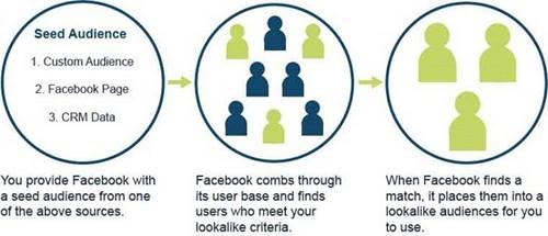 Facebook Insights - 3