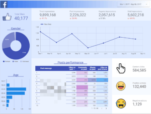 Facebook Page Insights - 1