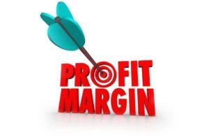 Calculate Profit Margin - 1