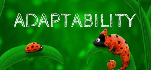 Leaders need to be agile and adaptable