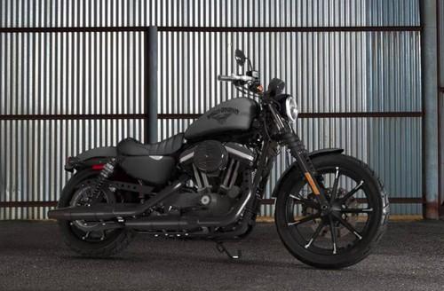 #15 Harley Davidson