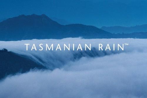 #16 Tasmanian Rain