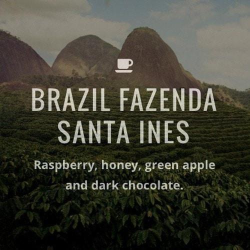#10 Fazenda Santa Ines Coffee