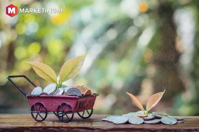 Requirements for Seed Funding