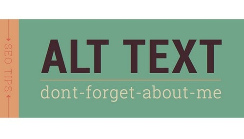 What is Image Alt Text