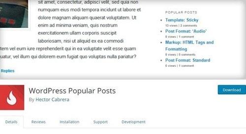 WordPress Popular Post WordPress plugin