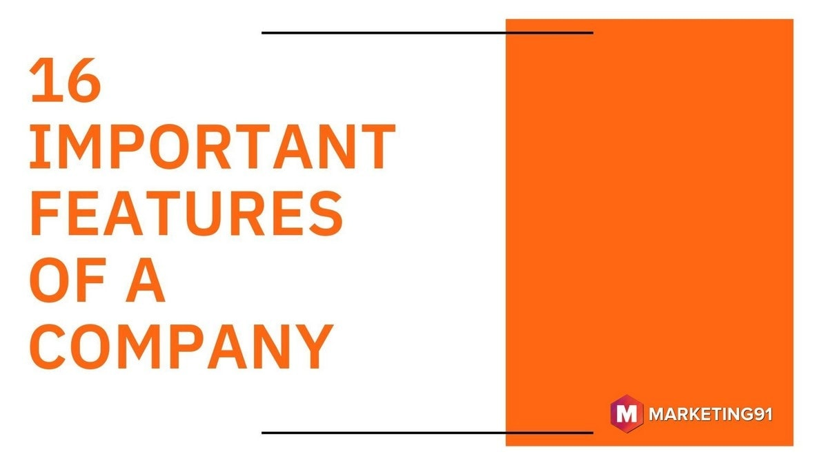 Important Features of a Company