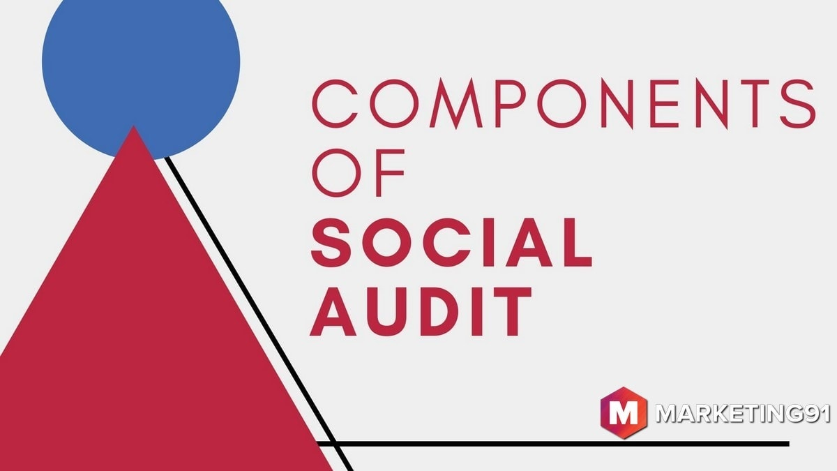 What is Social Audit