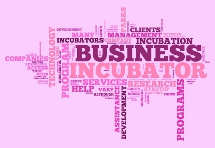 Business Incubator - 1