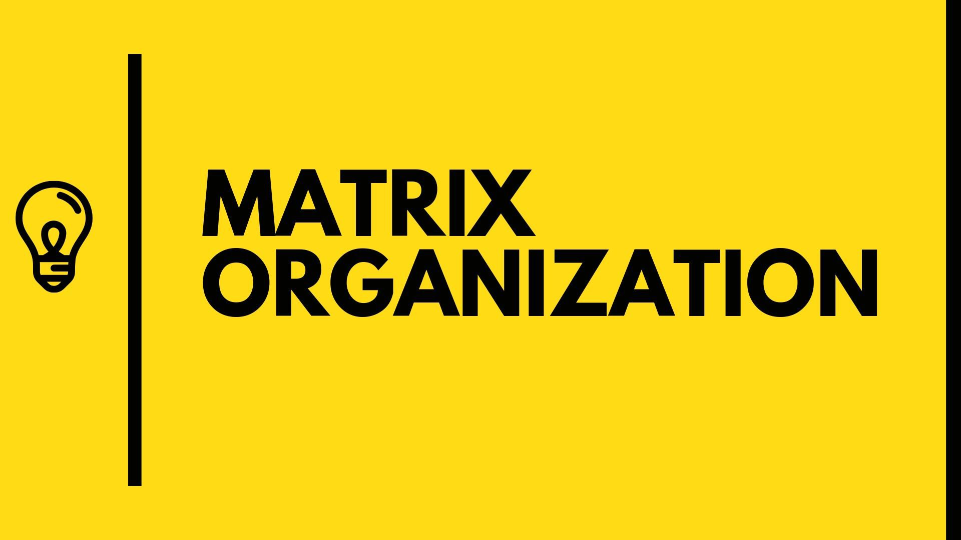 What is Matrix Organization