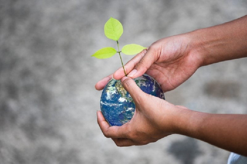 Understanding social responsibility