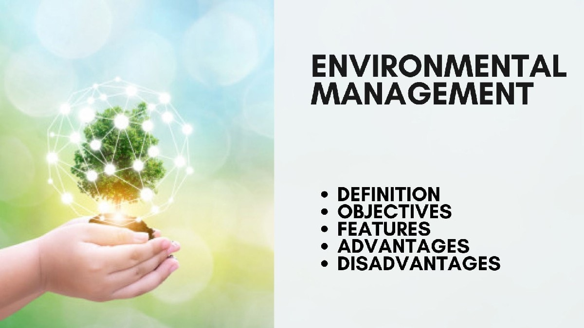 What are Environmental management